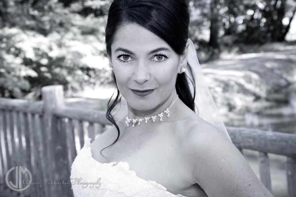 bridal portrait black and white