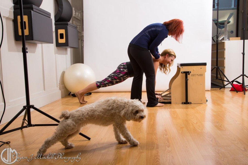 Photo of a dog doing pilates