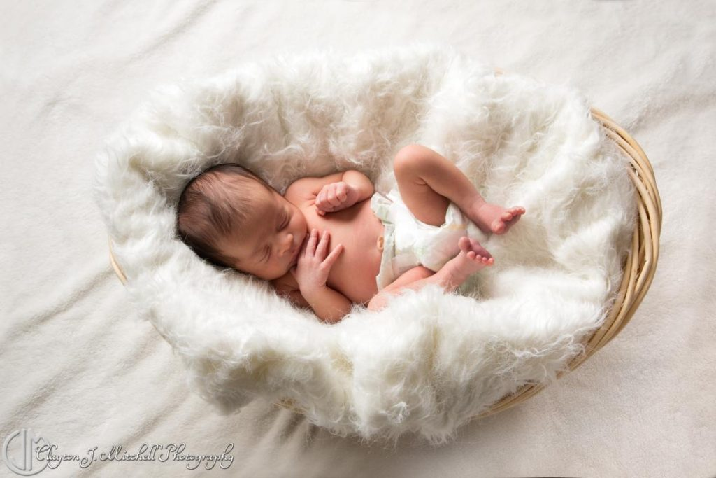 newborn baby in a basket photo