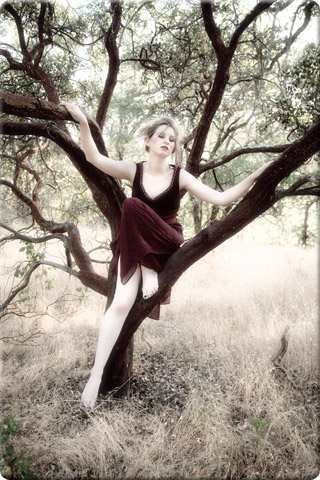 Model in a Manzanita Tree