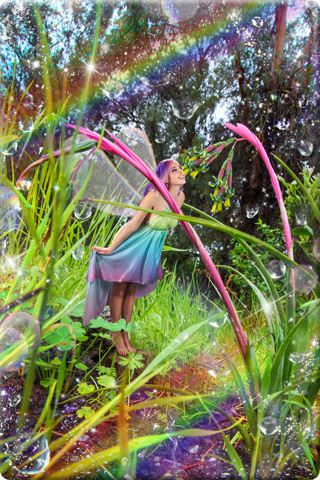 Rainbow Fairy in Morning Dew
